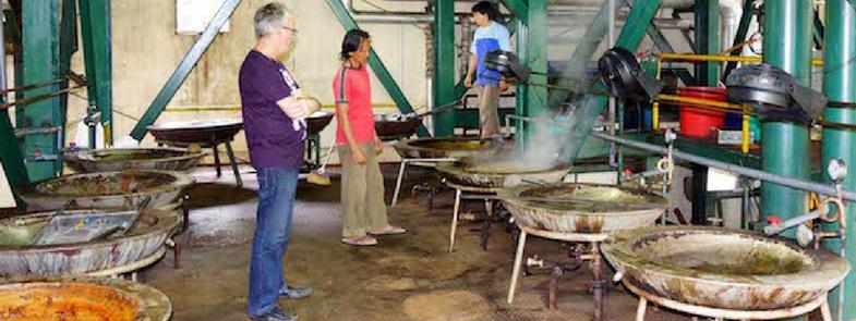 Palmsuiker fabriek deel 1 Blog Thumbnail 785x295 | Rowena Goes Ape