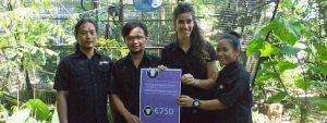 Red de Orang-Oetan in Borneo   Rowena Goes Ape