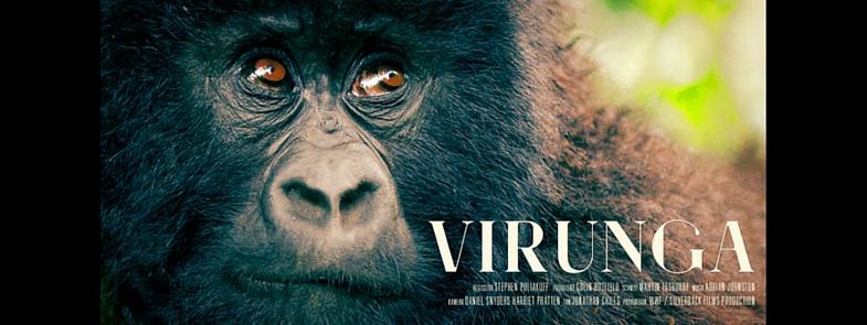 Virunga Blog Thumbnail 785x295 | Rowena Goes Ape