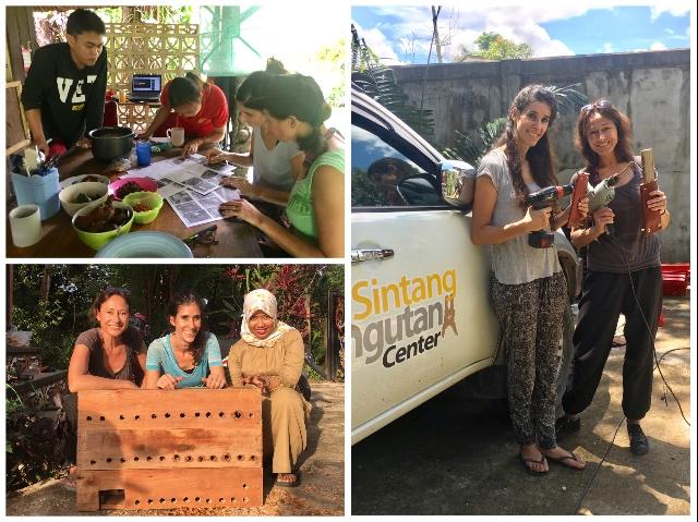 Orang-Oetans in Borneo 2 Verrijking | Rowena Goes Ape (6)