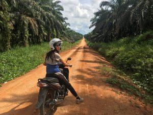 Project Borneo Orang-Oetans Deel 1 (9)   Rowena Goes Ape