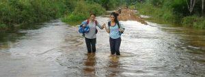 Project Borneo Orang-Oetans Deel 3 Blog Thumbnail 785x295