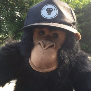 GO-APE LOGO ONLY CAP