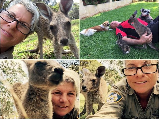 Australische Ranger Blog   Go-Ape (2)