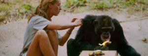 Jane Goodall Kijktip Blog Thumbnail 785x295   Rowena Goes Ape