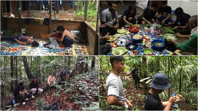 Vrijheid voor drie Orang-Oetans Blog | Go-Ape (7-8-9-10)