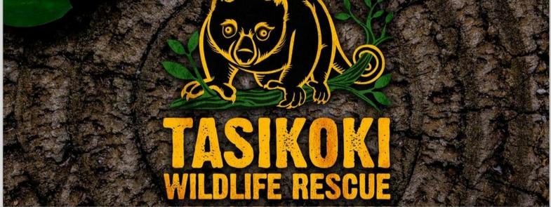 Tasikoki Nieuw Jasje Blog Thumbnail 785x295 | Rowena Goes Ape