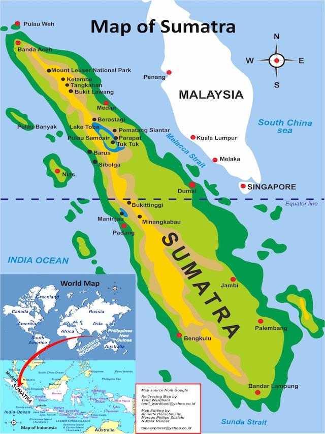 SOS Regenwoud Blog | Rowena Goes Ape (2)