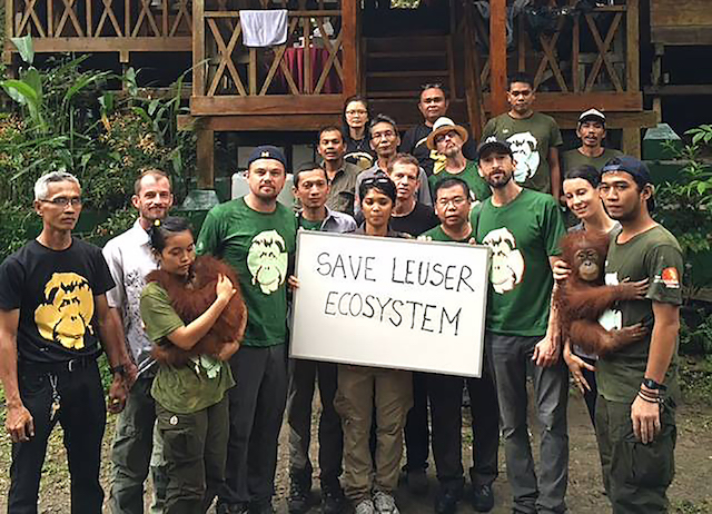 Guardians of Leuser Blog | Rowena Goes Ape (Leonardo DiCaprio)