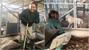 Exotische Zoogdiere AAP Blog   Rowena Goes Ape (7-8)