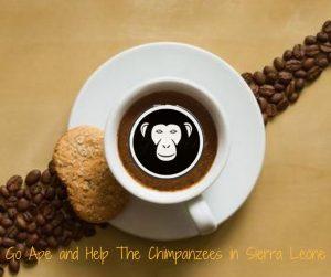 Help the Chimps in Sierra Leone