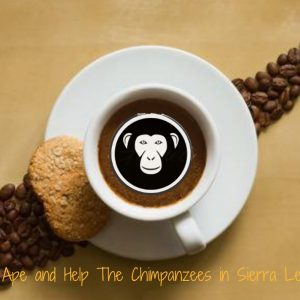 Help the Chimps in Sierra Leone