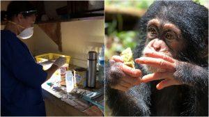 FIFO Blog | Rowena Goes Ape (1-1a)
