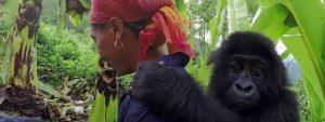Grauer Gorilla Blog Thumbnail 785x295 | Rowena Goes Ape