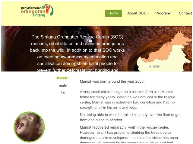 Orang-Oetan Profielen Gereed Blog | Rowena Goes Ape (1-2)