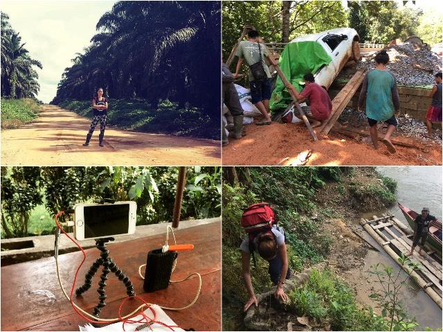 Mount Cameroon | Rowena Goes Ape (3-4-5-6)