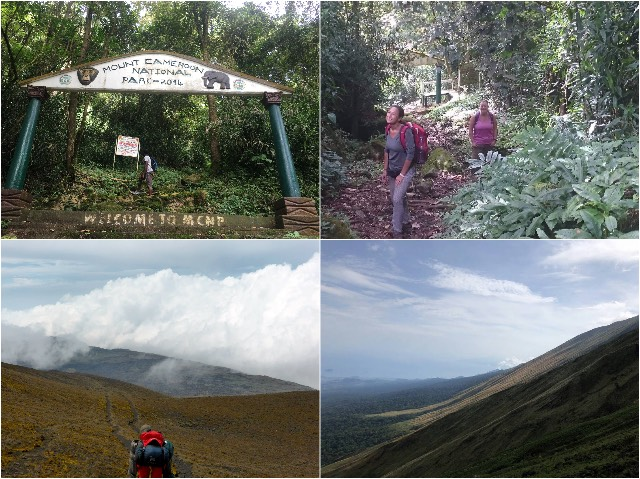 Mount Cameroon | Rowena Goes Ape (9-10-11-12)