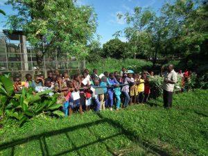 Limbe Wildlife op de valreep Blog | Rowena Goes Ape (2) nature club