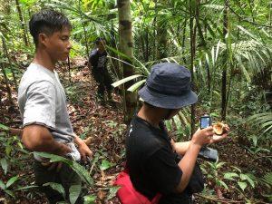 Update Orang-Oetans Borneo Blog   Rowena Goes Ape (11)