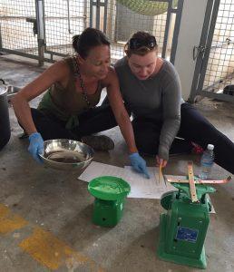 Werken in een opvangcentrum Free the Bears | Rowena Goes Ape (4)