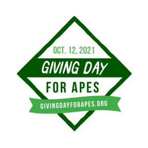 Logo Giving Day for Apes | Rowena Goes Ape