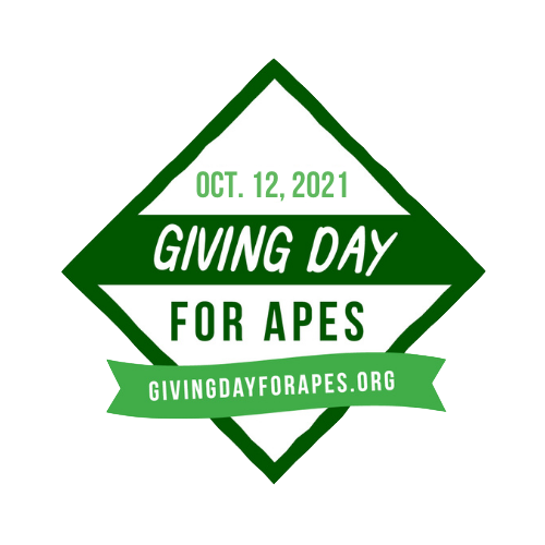 Logo Giving Day for Apes   Rowena Goes Ape